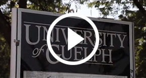 View a video of our Guelph apartment community