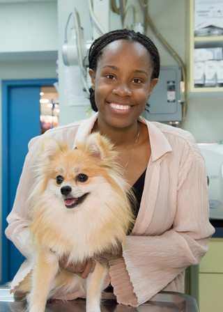 New york veterinary happy dog