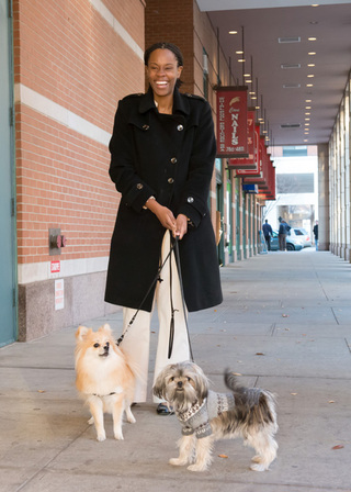 Walking dogs veterinary new york