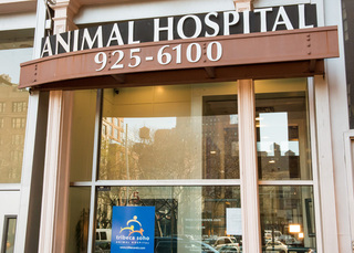 Enterence new york veterinary