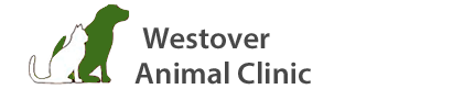 Westover Animal Clinic