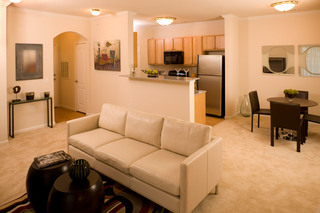 Apartments in Lafayette have bright and open livingrooms