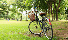 A bike in the park in Brampton Ontario