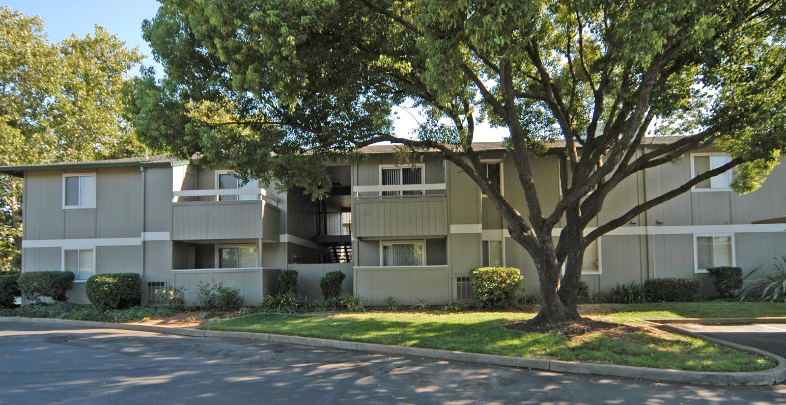 Tree shaded apartments in Sacramento