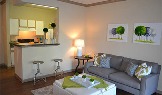 Apartment living room model in san antonio
