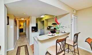 Inside Miami Florida apartment homes