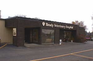The Brady Veterinary Hospital story