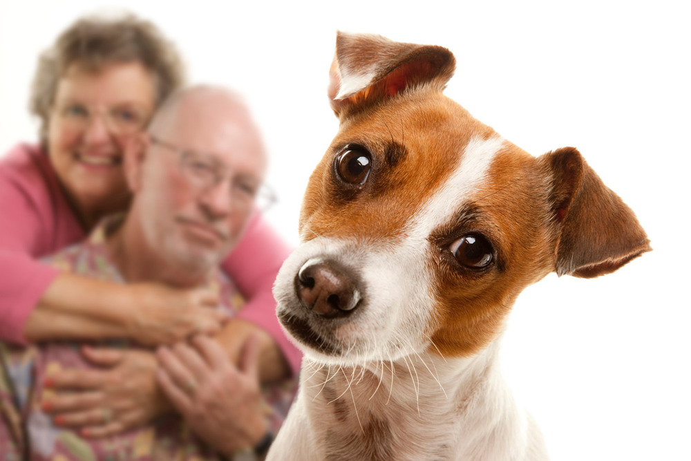 Portland senior living community is pet friendly