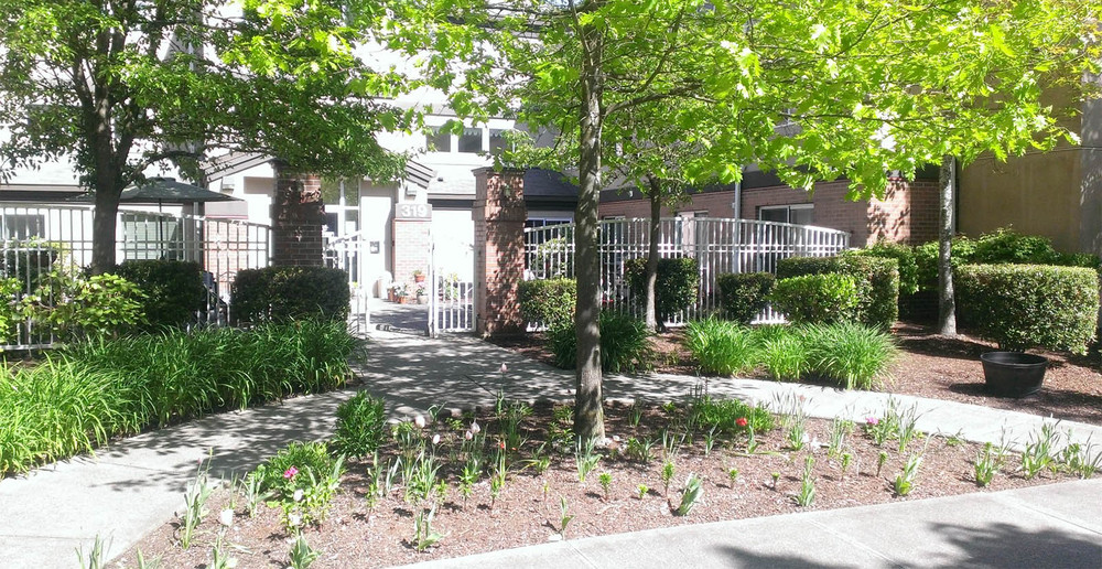 Senior living landscaped apartment grounds in tacoma