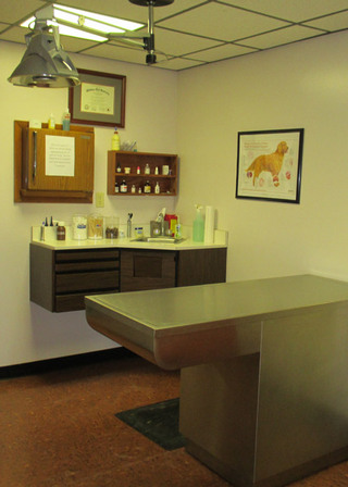 Exam room vet in carlsbad