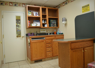 Lewisburg animal hospital exam room