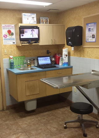 Exam room in vet hillsboro beach