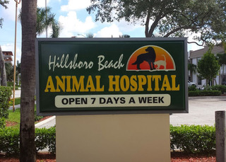 Welcome to hillsboro beach vet