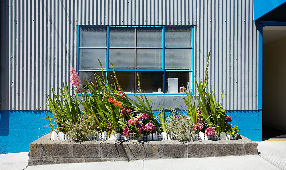Landscaped exterior of Sausalito storage