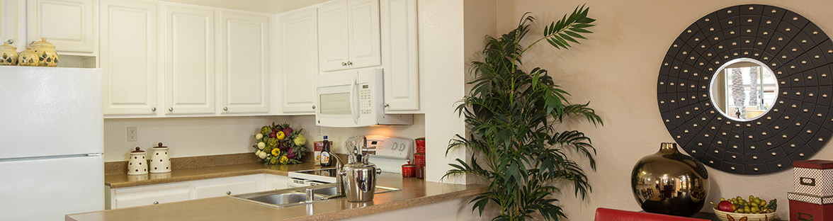Apartments in Laguna Niguel kitchen