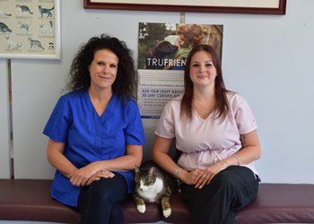 About Terrace Animal Clinic in Great Neck