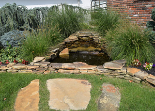 Water feature valley stream vet