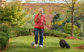 Resident enjoying walking the dogs in Boyertown senior living