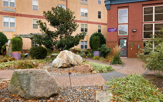 Well landscaped yard in Reading senior living