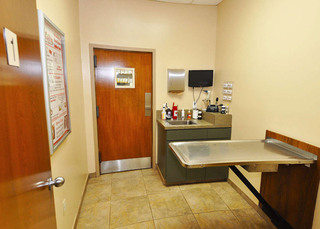 Our spacious exam room at our Orlando vet clinic