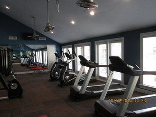 Fitness free weights
