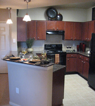 Kitchen texas apartments for rent