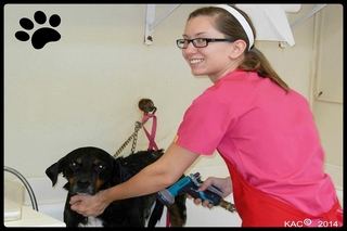 Brooke in grooming area.
