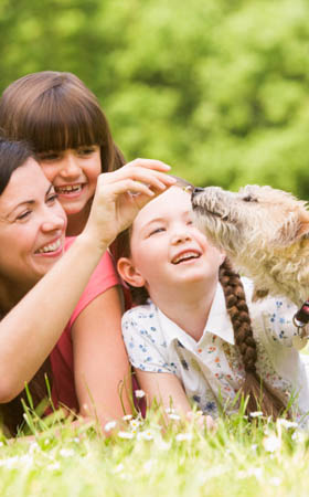 Learn more about pet friendly apartments College Station