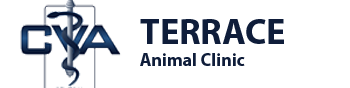 Terrace Animal Clinic