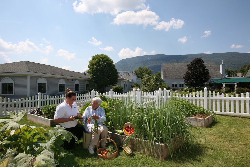 Green mountain gardening manchester center senior living