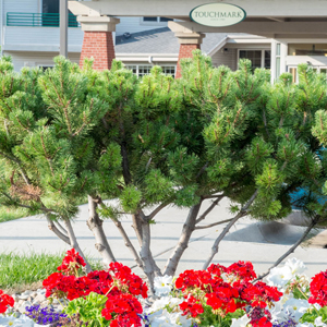 Enjoy many fun outings near our Senior Living Community in Helena, MT
