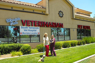 Staff in front of murrieta veterinary hospital