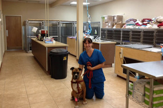 Staff wth pet at murrieta veterinary hospital