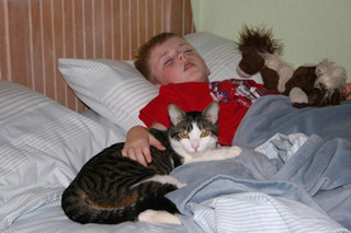 Boy sleeping with his cat at murrieta veterinary hospital