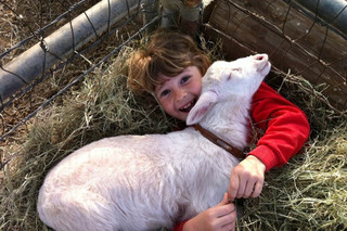 Boy with happy goat at murrieta veterinary hospital