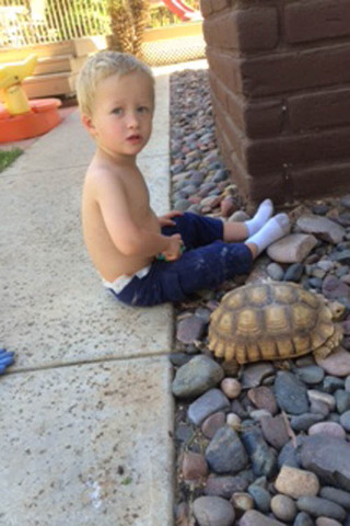 Little boy and turtle at murrieta veterinary hospital