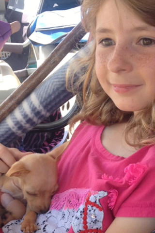 Little girl holding happy puppy at murrieta veterinary hospital