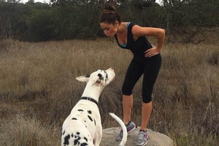 Murrieta veterinary hospital staff with dog hiking