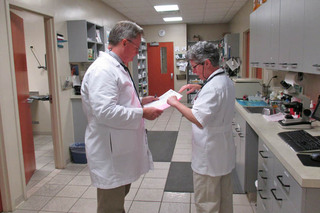 Doctors discussing at augusta veterinary hospital