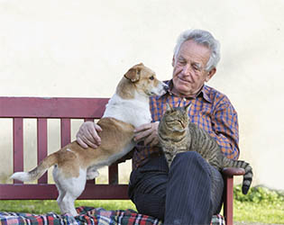 The Arbors at South Breeze is a pet friendly senior living memory care community in Memphis, TN.