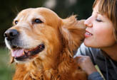 Pet friendly apartments at Stonegate Apartment Homes in Birmingham