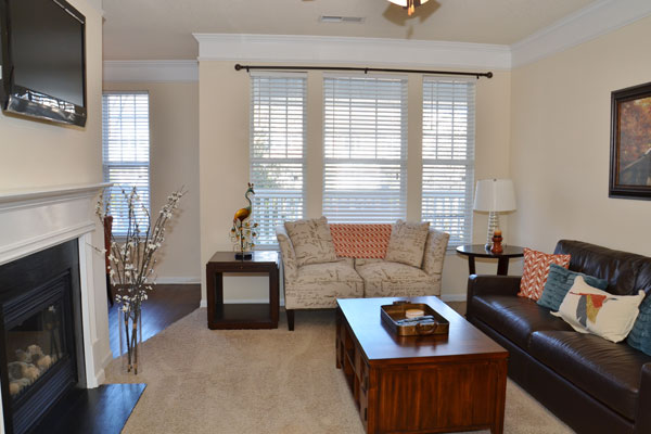 Huntersville apartments living room