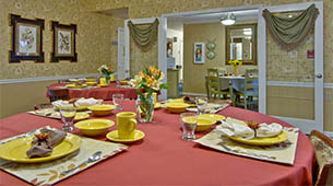 Services and amenities for senior living residents at Bluff Creek Terrace.