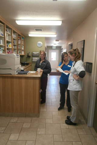 Pharmacy available at minden veterinary clinic