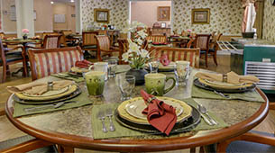 Services and amenities for senior living residents at Harmony Gardens.