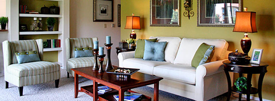 Apartment rental living room at the Waters Edge in Plano Texas