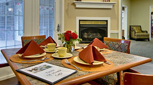 Services and amenities for senior living residents at Olive Grove Terrace.