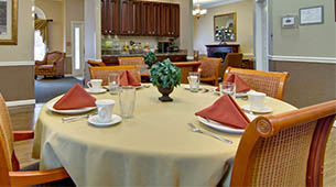 Services and amenities for senior living residents at River Mist.