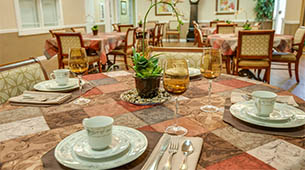 Services and amenities for senior living residents at Riverview Terrace.