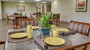 Services and amenities for senior living residents at SummitView Terrace.